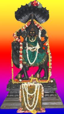 Pratyangira Devi Homam