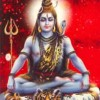 Laghu Rudra Homam