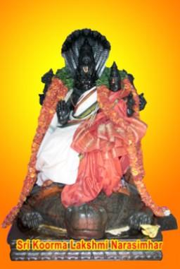 Lakshmi Narasimha Homam