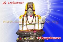 Ati Rudra Maha Yajnam Homam
