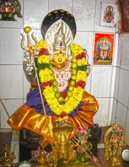 Naga Kanni