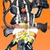 Sri Anjaneyar homam