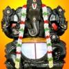 Sri Vinayagar danvantri