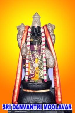 Sri Danvantri Perumal- (8 Feet)