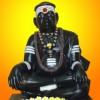 Sri Kuzhandhai Ananda Maha Swamigal